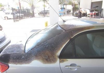 Global Auto Repair 13